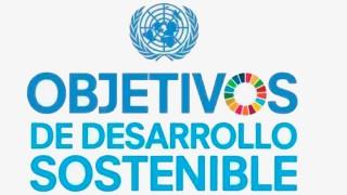 onu_desarrollo_sostenible.jpg